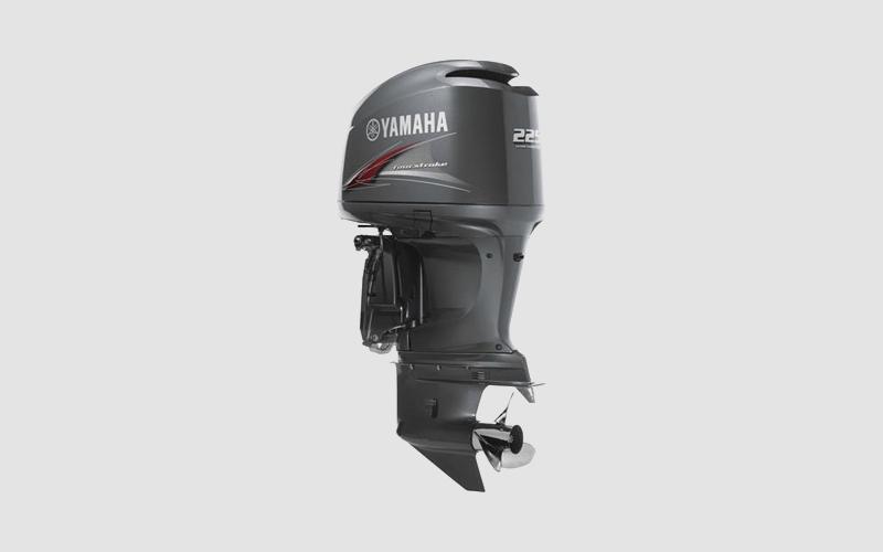 Yamaha F225B